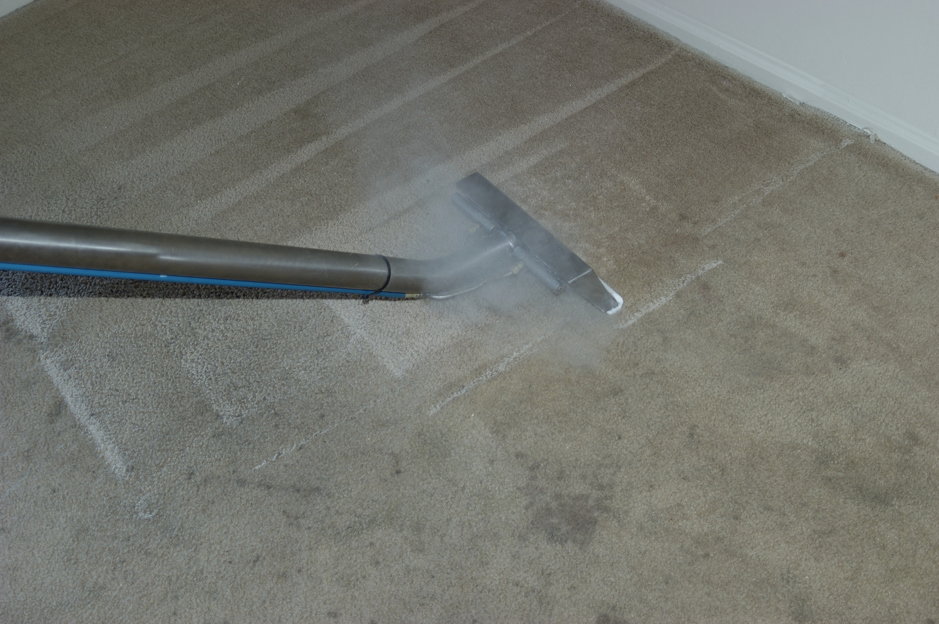 Apex Carpet Care Carpet Cleaning For Residential And