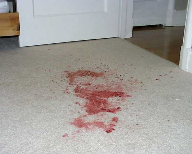 how to get rid of blood off carpets